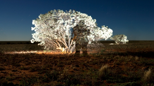 080718-Old-Cordillo-Rd_Moonlight_2_1920x1080